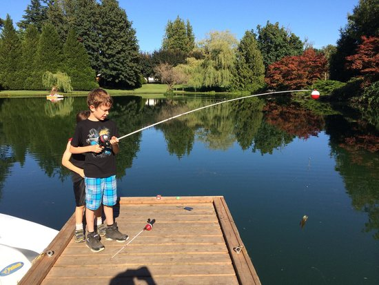 Lynden / Bellingham KOA: Catch and release little fish with salmon eggs!