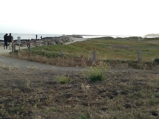 Pillar Point RV Park : View from water front RV sites