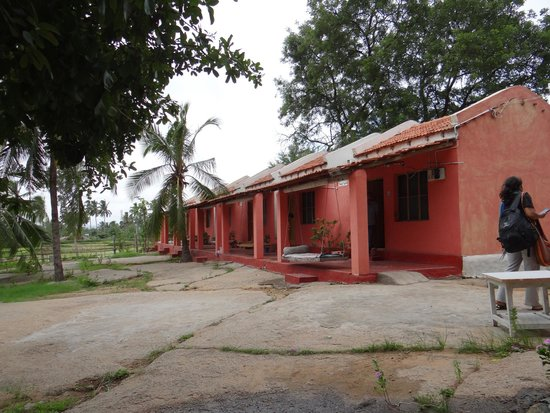 Gowri Resort: Sit out