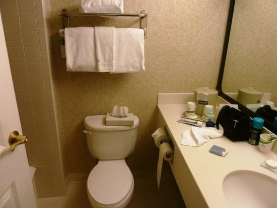 Wingate by Wyndham Cincinnati/Blue Ash: Adequate bathroom