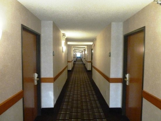 Wingate by Wyndham Cincinnati/Blue Ash: The long corridors are well lit and clean