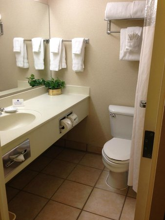 BEST WESTERN Plus Evergreen Inn & Suites: Bathroom - extremely small