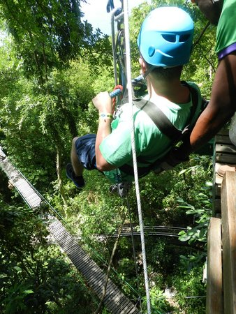 Rainforest Adventures : zip line (vertical)