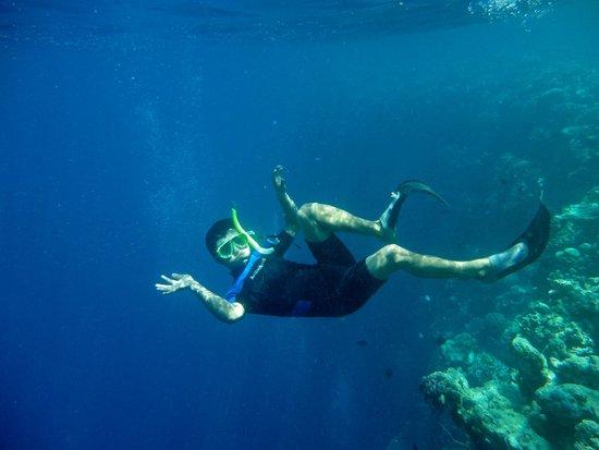 Bunaken National Marine Park: terbang bebas di dalam laut lepas