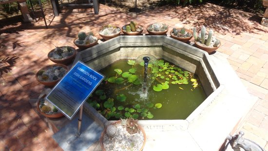 Tucson Botanical Gardens: Fountain in the Main Entrance Garden