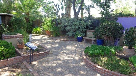 Tucson Botanical Gardens: Herb Garden