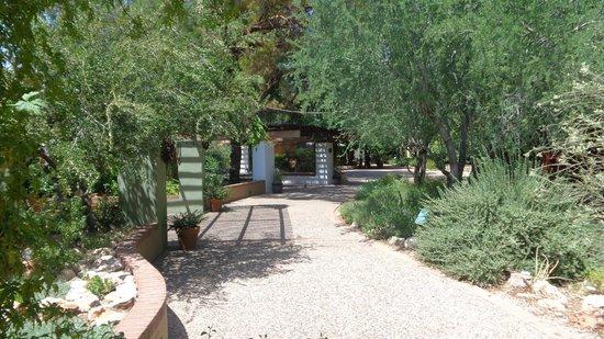 Tucson Botanical Gardens: Path through the main Garden