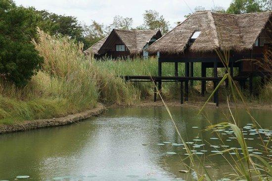 Jetwing Vil Uyana : water dwelling