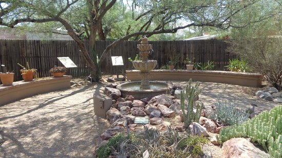 Tucson Botanical Gardens: Fountain at the back of the Gardens