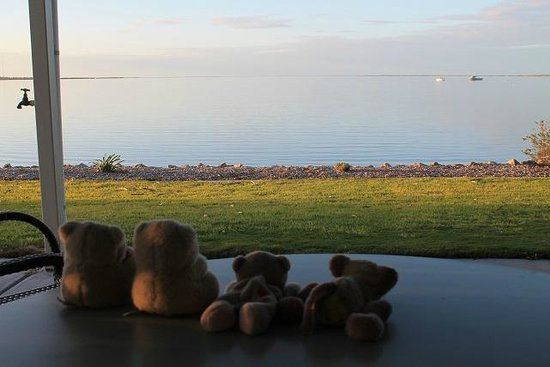 Streaky Bay Foreshore Tourist Park: View from Brick Units