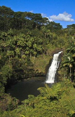 The Inn at Kulaniapia Falls: Kulaniapia Falls
