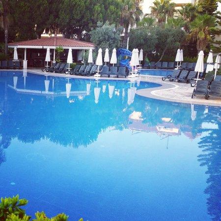 Kentia Apartments: swimming pool