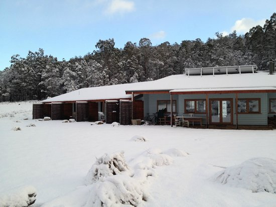 Forest Walks Lodge: Winter