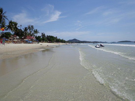 Chaweng Cove Beach Resort : la playa