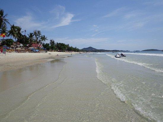 Chaweng Cove Beach Resort: la playa