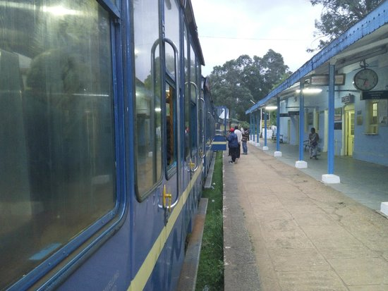 Heritage Train: Toy Train Picture 1