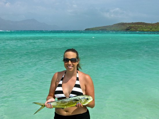 Villa del Palmar Beach Resort & Spa at The Islands of Loreto: One of the three dorado we caught fishing on the Crackerjack