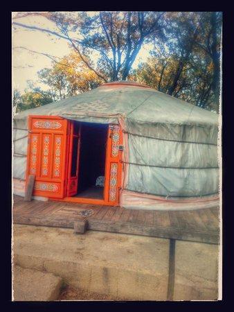 La Terre des Lauriers : La grande yourte