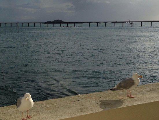 Ibis Roscoff Bord de Mer: Vu de la chambre