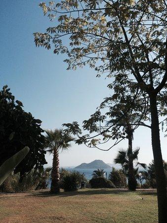 Yasmin Resort Bodrum: View from my room