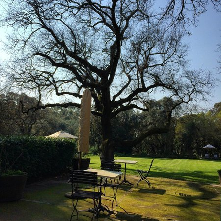 Bartholomeus Klip Farmhouse : view from high tea