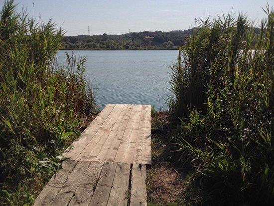 Lago dell'Accesa: Ottimo posto da dove fare 2 tuffi.