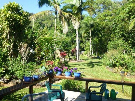 Cow Bay Homestay : Veranda and garden