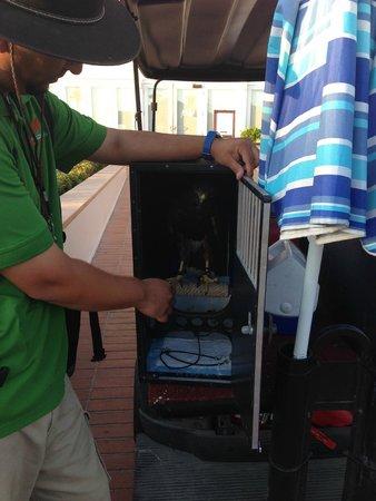 Hotel del Coronado: Lucky to spot Hotel Falcon