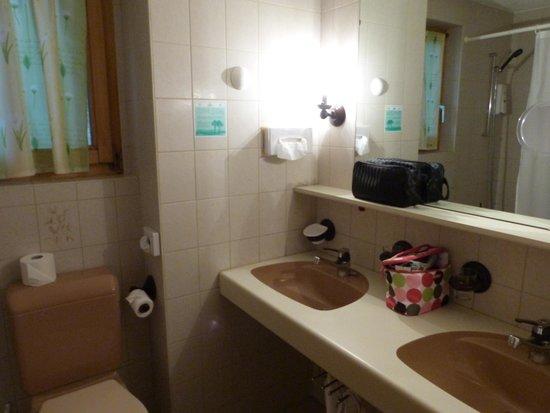 Hotel Alpenroyal : SDB