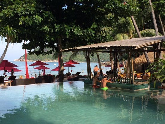Anantara Rasananda Koh Phangan Villas: Bar in the swimming pool