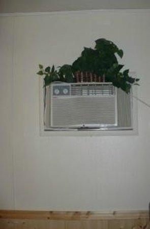 Golden Hills Motel: green plastic vine atop AC wall unit