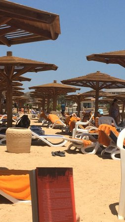 Hurghada Marriott Beach Resort: Beach