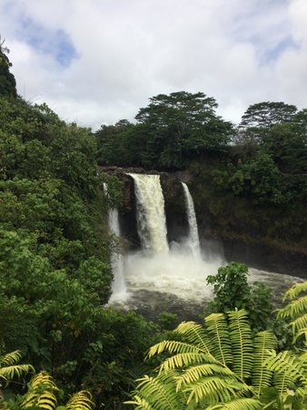 Rainbow Falls: After Iselle.