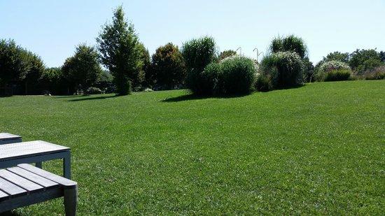 Parco dei Cimini: pace e quiete