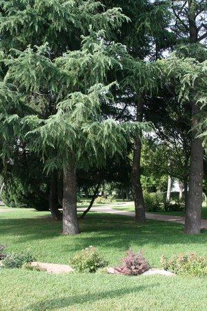 Relais Villa Valfiore: garden