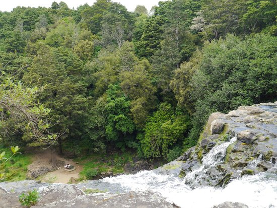 View over edge of Whangarei Falls to picnic spot below