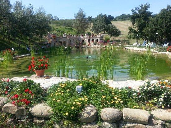 La Ciminiera Country House : biolago