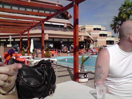 Auramar Beach Resort : Outdoor pool area