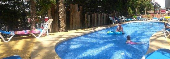 Hotel Flamingo Oasis : kids pool