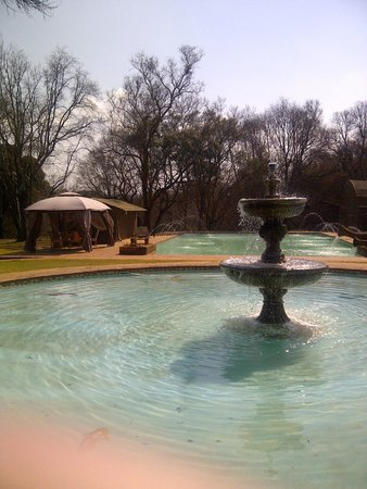 Hornbill Lodge: Swimming pool and grounds