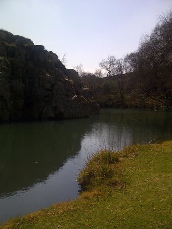 Hornbill Lodge: View of the Magalies River that flows through the venue