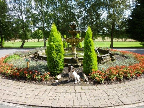 Aldwark Manor Golf & Spa Hotel: Hotel grounds