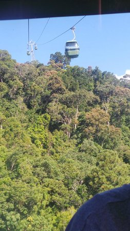 Skyrail Rainforest Cableway: view from cable cars