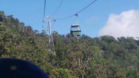 Skyrail Rainforest Cableway: another cable car passing us