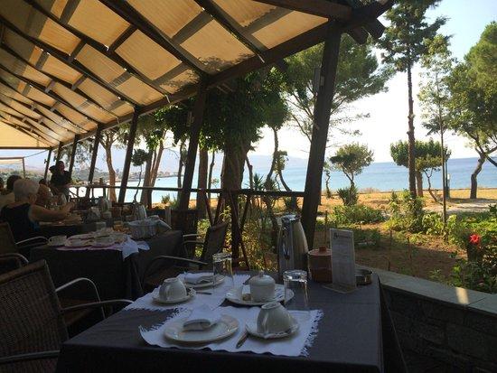 Karystion Hotel: Εξωτερικος χωρος