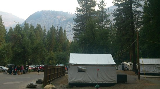 Half Dome Village: view from the tent in Curry Village
