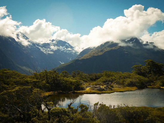 Blue Thistle Cottages: Routeburn track