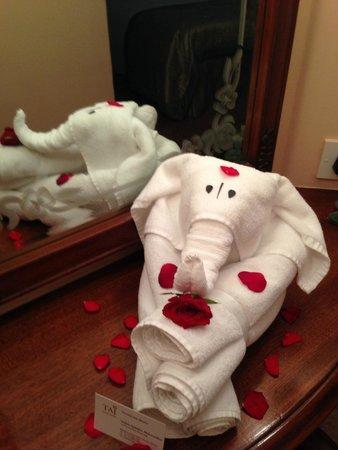 Taj Lands End Mumbai : Vijay's Amazing Towel Elephant!