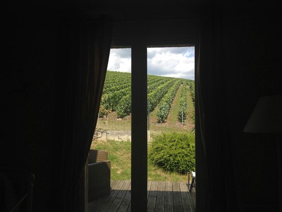 Au Coeur des Vignes : View from Chardonnay Room