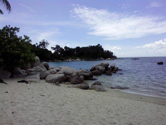 Trikora Beach: Pantai Trikora